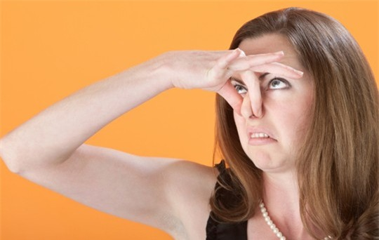 Mua máy ozone giảm thiểu mùi hôi