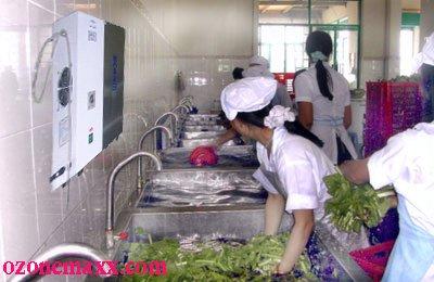 Hệ thống rửa rau sạch bằng máy ozone
